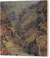 Tenerife Coastline Wood Print