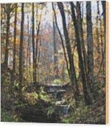 Tennessee Falls Wood Print