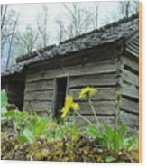 Tennessee Homestead Wood Print