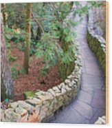 Tennessee Mountain Path Wood Print