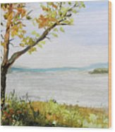 Tennessee River In The Fall Wood Print