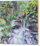 Tennessee Waterfall Wood Print