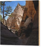 Tent Rocks Canyon Wood Print