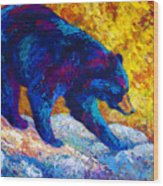 Tentative Step - Black Bear Wood Print