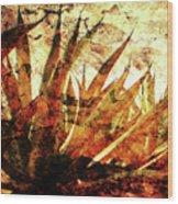 T E Q U I L A   .  F I E L D Wood Print