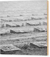 Terezin Cemetery Graves - Czechia Wood Print