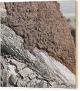 Termite Nest Wood Print