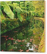 Terra Nostra Park Wood Print