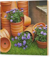 Terracotta Flower Pots Wood Print
