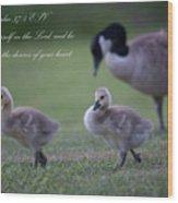 Psalm 37 Wood Print