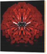 Test Red Abstract Flower 3 Wood Print