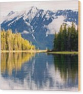 Teton Beauty Wood Print