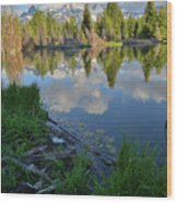 Teton Reflection In Schwabacher Landing Wood Print