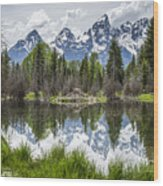 Teton Reflection Wood Print