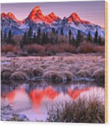 Teton Reflections In The Frosted Willows Wood Print