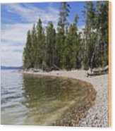 Teton Shore Wood Print