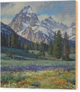 Teton Splendor Wood Print
