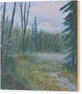 Teton Valley Wood Print