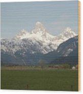 Teton Valley Wood Print