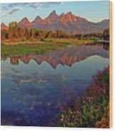 Teton Wildflowers Wood Print
