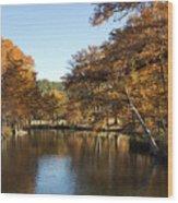 Texas Autumn Wood Print