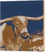 Texas Bevo Color 6 Wood Print by Scott Kelley