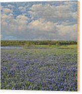 Texas Bluebonnet Bliss Wood Print