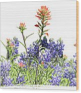 Texas Bluebonnets And Red Indian Paintbrushes Wood Print