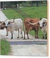 Texas Cattle Guard Wood Print