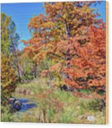 Texas Hill Country Autumn Wood Print