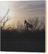 Texas Landscape Wood Print