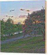 Texas Landscape5 Wood Print