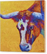 Texas Longhorn Cow Study Wood Print