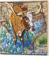 Texas Longhorn In Bluebonnets Wood Print