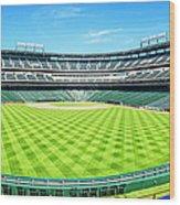 Texas Rangers Ballpark Waiting For Action Wood Print