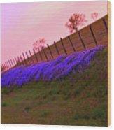 Texas Sherbet Country Wood Print