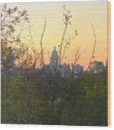 Texas State Capital From Far East Austin Wood Print
