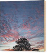 Texas Sunset Wood Print