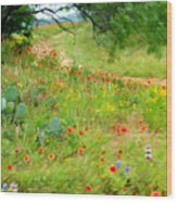 Texas Wildflowers And Cactus - Country Road Wood Print