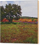 Texas Wildflowers Wood Print by Tamyra Ayles