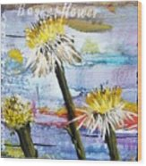 Texas Wildflowers Tp A E Wood Print