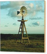 Texas Windmill Wood Print