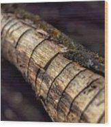 Texteured Branch Wood Print