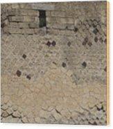 Textural Antiquities Herculaneum Wall One Wood Print