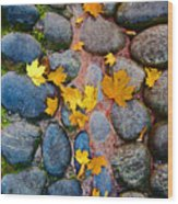 Texture. Autumn. Wood Print