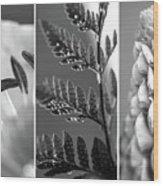 Texture Triptych Wood Print