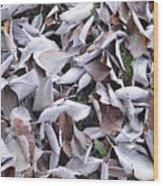 Texture103 Wood Print