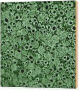Texture5 Wood Print