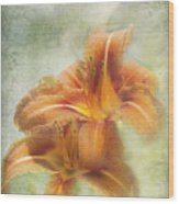 Textured Daylilies  Wood Print