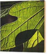 Textured Glow Wood Print